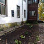 Pirmās iestādītās rozes pie piemiņas plāksnes pirms 10 gadiem likvidētajai Zalves pamatskolai